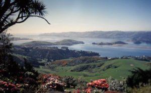 Neuseeland - Am-Ziel-Erleuchtung